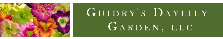 guidry's daylily banner